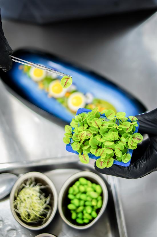 styling jedla bylinkami